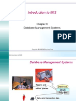 Management Information System 06