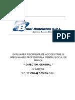 Evaluare Risc Director General
