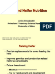 Calf and Heifer Nutrition Note
