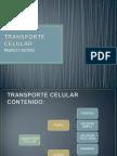 biologia cont. transporte pasivo activo.ppt