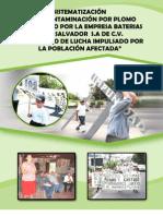 Investigacion Completa RECORD contaminacion plomo Cesta