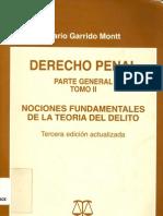 Derecho Penal Tomo II Garrido Montt Mario