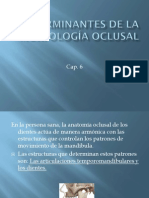 Determinantes de La Morfologa Oclusal Cap 6