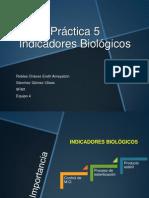 control microbiológico P5