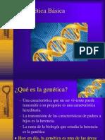 Genetica basica.ppt