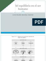 BIOFISICA 3 Control Del Equilibrio en El Ser Humano