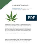 EL Uso de La Marihuana