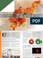 04 Microbiologia Molecular y Biologia de Las Infecciones
