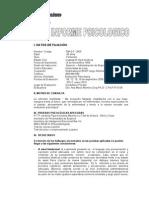 Informe Psicologico Gm Sf 2005 10