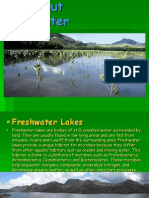 All About Freshwater.ppt