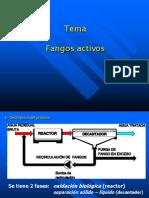Ponencia - fangos activos (1)