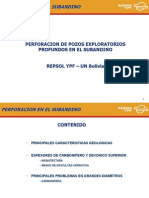 PerforacionenelsubandinoBolivia-IAPGnqn11-06
