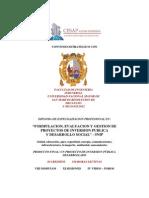 Diploma_formulacion Evaluacion y Gestion de Proyectos de Inversion Publica_snip