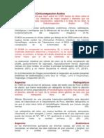 Características del Dolicomegacolon Andino.docx