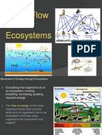 energyflowinecosystems-110606120857-phpapp02