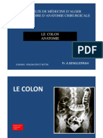 Anatomie2an Colon 12