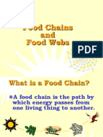 foodchainsandwebs-090806215858-phpapp01