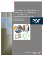 Informe Sistemas Integrados de Gestion