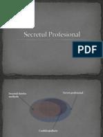 Secretul Profesional Rezi Apr 2013