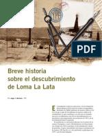 BreveHistoria Loma de La Lata