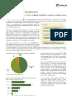 Lundquist CSR Questionnaire Summary 2009