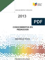 Instructivo_Pedagogia_2013