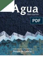 Revista agua Bien Común No1