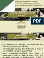UFPA ROSA 2013