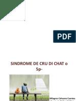 Presentacion Con Analu Cri Du Chat