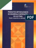 Productos Metodologicos Desarrollo Pymes