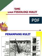 Anatomi Dan Fisiologi Kulit