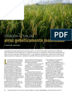 Rice Today Vol. 12 No. 1 Situacion Actual del Arroz Geneticamente Modificado