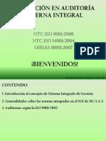 Calidad Auditores Internos 2010