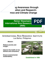 Wassmann Media Alliance IRRI