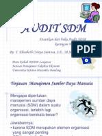 3...Audit_SDM