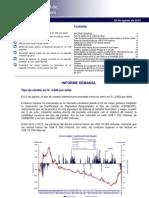resumen-informativo-33-2013
