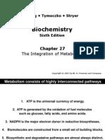 clase I integración metabólica 17 abril 2012