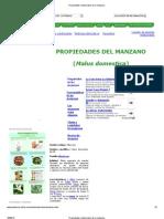 Propiedades Medicinales de La Manzana