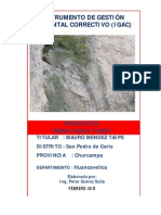 IGAC-MINA-PUKA-TORO-mauro-mendez.pdf