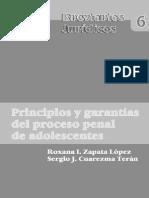 Principio y Garantias Del Proceso Penal Adolescente - Roxana Zapata Lopez y Sergio j. Cuarezma t