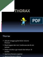 Dinding Thorax Pulmo