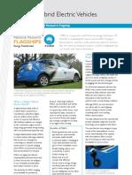 Phev Etf PDF Standard