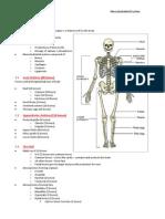 2013 BAA - Musculoskeletal System