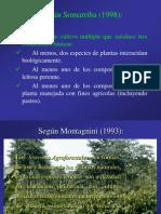Sistemas Agroforestales Para Cacao