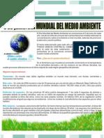 ARTICULO DÍA MUNDIAL DEL MEDIO AMBIENTE