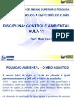 AULACONTROLE_11_08[1] poluição do meio ambiente