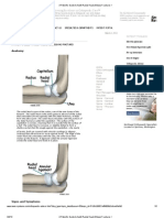 A Patient's Guide to Adult Radial Head (Elbow) Fractures