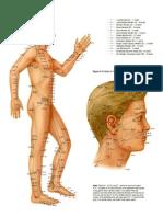 points2.pdf