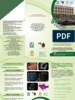 triptico academia ok.pdf