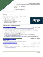 derick cv - generique pour weebly - aout 2013 doc